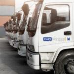 El sector logístico como modelo de estabilidad en su recuperación frente a otros sectores